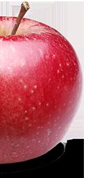 Flyer Distribution - Apple